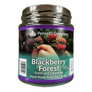 blackberry forest scented candle from penseth company.jpg