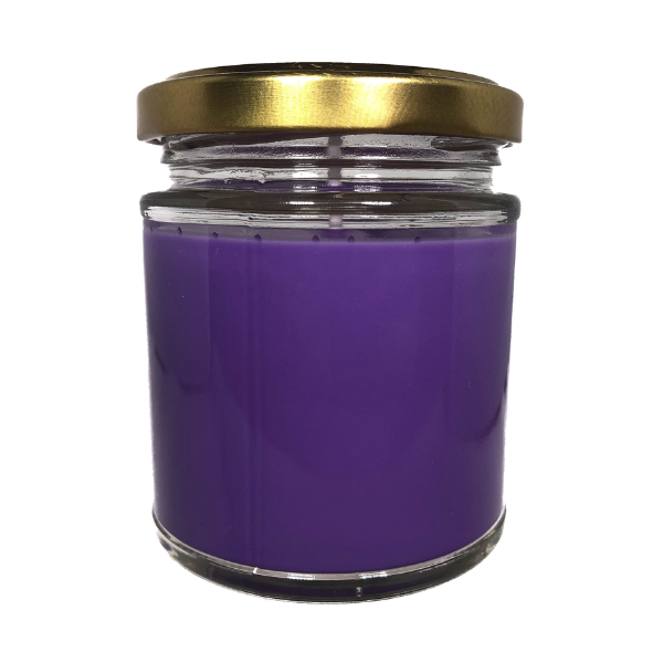 Blueberry Vanilla Scented Candle From The Penseth Company 1