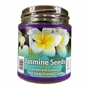 jasmine seeds scented candle from penseth company.jpg