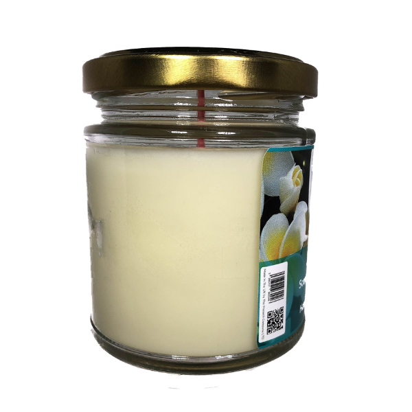 Just Jasmine Scented Candle From The Penseth Company 3