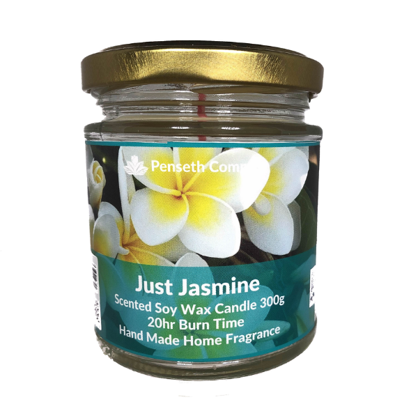 Just Jasmine Scented Candle From The Penseth Company