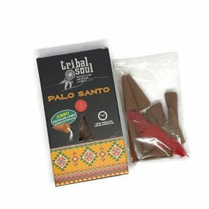 Palo Santo Backflow Incense From Tribal Soul At The Penseth Company